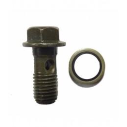 Tornillo de radiador 10mm